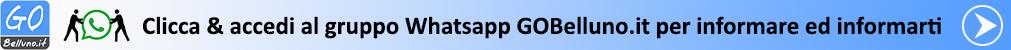 Clicca & accedi al gruppo Whatsapp GOBelluno.it per informare ed informarti