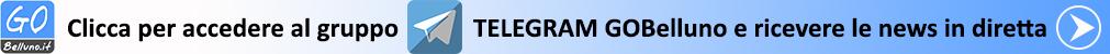 Clicca & accedi al gruppo TELEGRAM GOBelluno.it per ricevere le news in diretta
